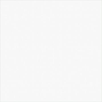 Diamond White Delacora 41х41, глазурованный керамогранит